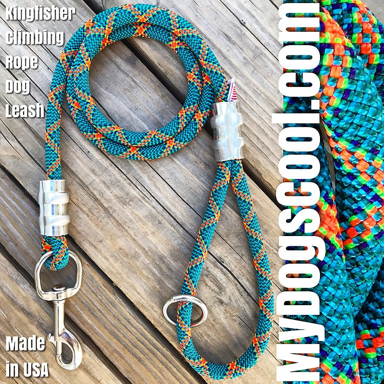 Strong Leashes for the Big Dogs - MyDogsCool.com