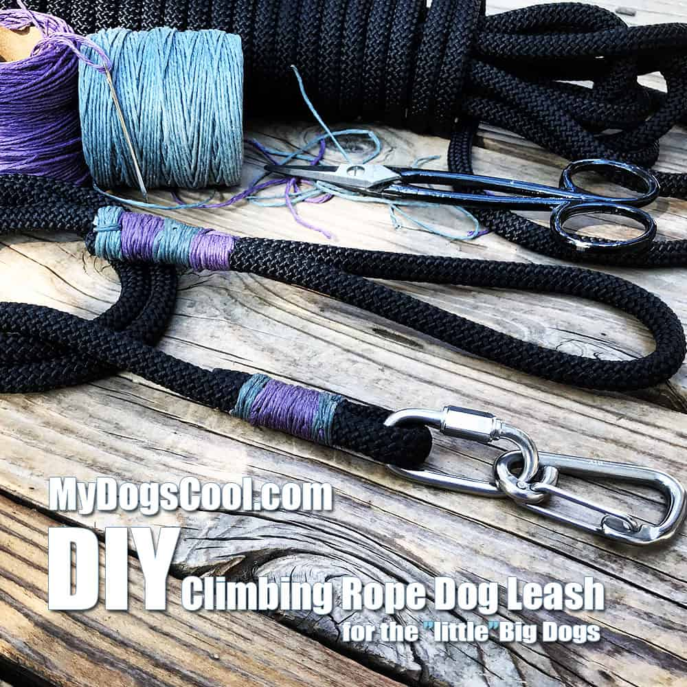 DIY Climbing Rope Dog Leash Project - MyDogsCool.com